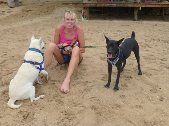 Lanta Animal Welfare: out for a walk on the beach