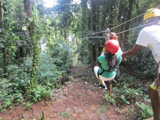 Sky Zipline Canopy Tour at Red Frog Beach :                   Lets go!