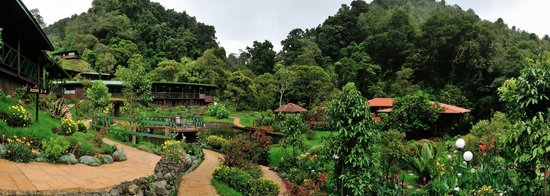 San Gerardo de Dota, Costa Rica: Panoramic view of the gardens
