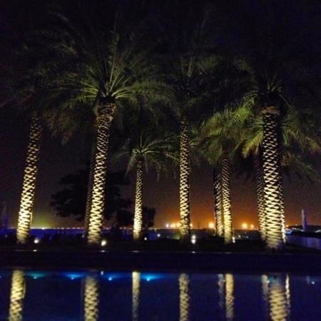 Crowne Plaza Dubai Festival City : área de piscina