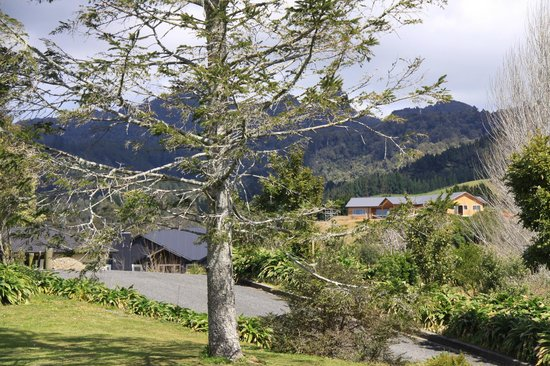 Kaimai Country Lodge: The lodge is nestled under the mountains