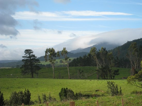 One of the many lovely views from Kaimai Country Lodge