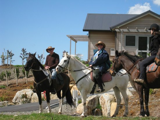 Kaimai Country Lodge: Take a horse ride with Marianna