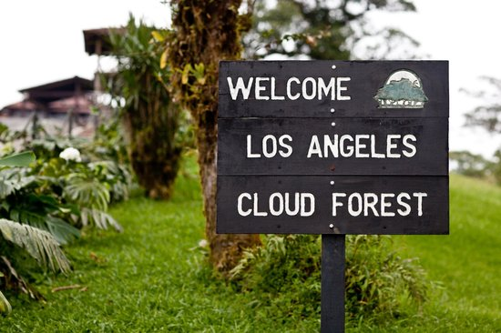 Villa Blanca Cloud Forest Hotel and Nature Reserve: Hotel & grounds
