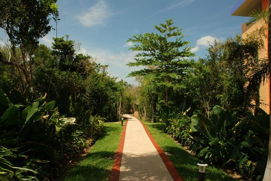 Grand Palladium Colonial Resort & Spa: immaculate hotel grounds with clean paths