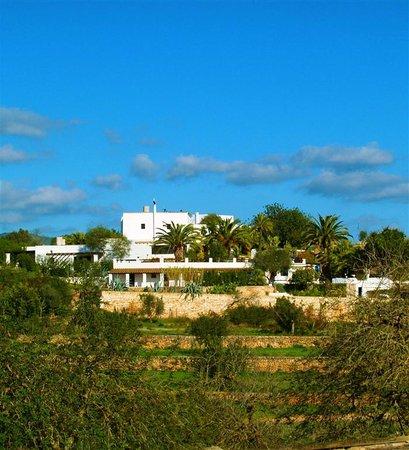 Finca La Colina : getlstd_property_photo