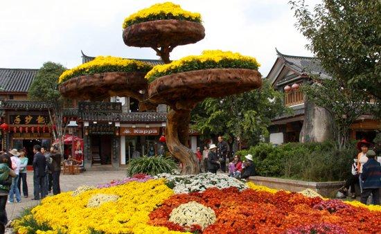 麗江古城照片