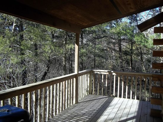 Wisteria Lane Lodging : View off deck of Cabin 4