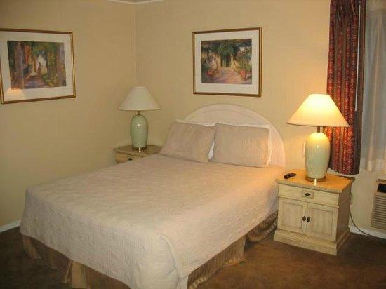 20th Century Motor Lodge: Queen room
