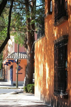 Hostal Cuija Coyoacan: Neighborhood in front of hostel