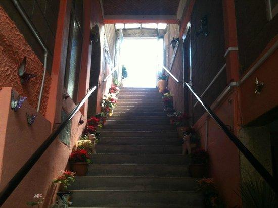 Casona de las Aves: Entrance to reception area