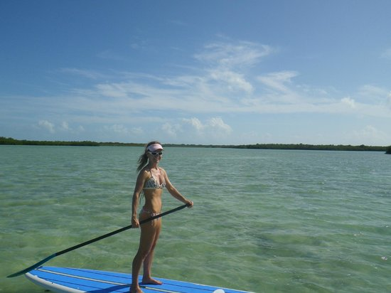 Paddle Board The Keys