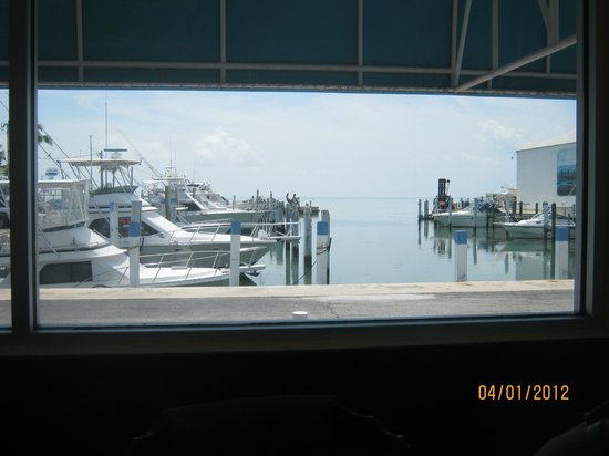 Habanos Oceanfront: This was the view from our big family style table!