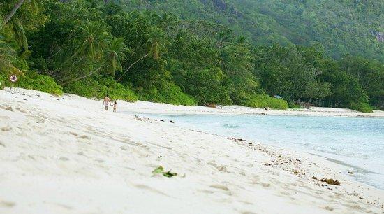 Kempinski Seychelles Resort: пляж у отеля