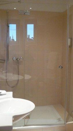 Hotel Rochat: 302 bagno