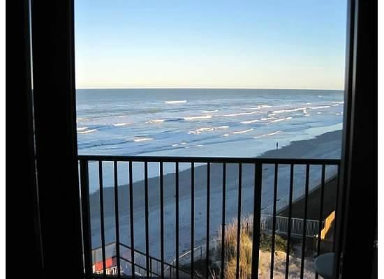 Ocean Trillium Suites: view
