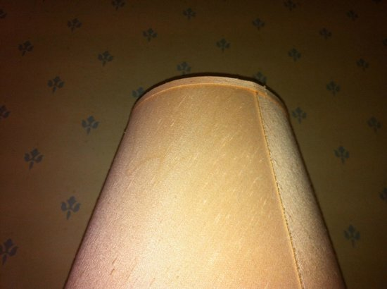 TLH Derwent Hotel : dead dragon fly in lamp shade plus very dirty