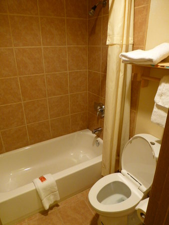 Econo Lodge Inn & Suites: Shower