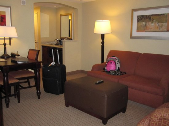 Embassy Suites by Hilton Tampa - Downtown Convention Center: Living room area