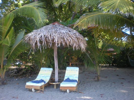 Fenix Hotel - On The Beach: There were always clean lounges on the beach