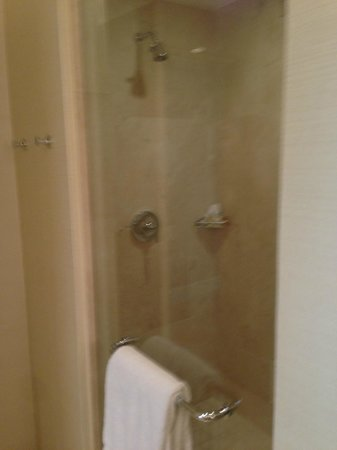 The Bristol Panama Hotel & SPA: Shower in a Tower Executive King