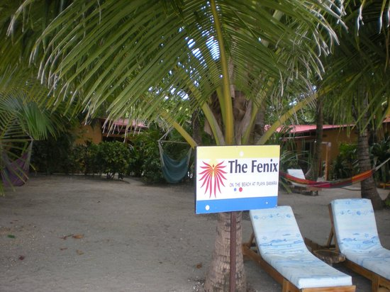 Fenix Hotel - On The Beach: That's The Fenix