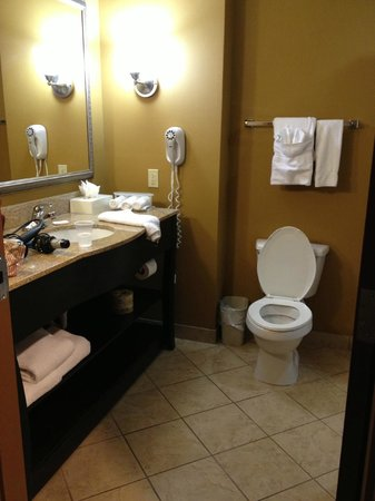 Holiday Inn Express Hotel & Suites Foley: Bathroom