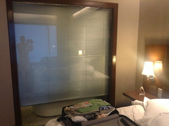 Crowne Plaza Hotel Gurgaon : Blinds that decided to go up and down automatically at night