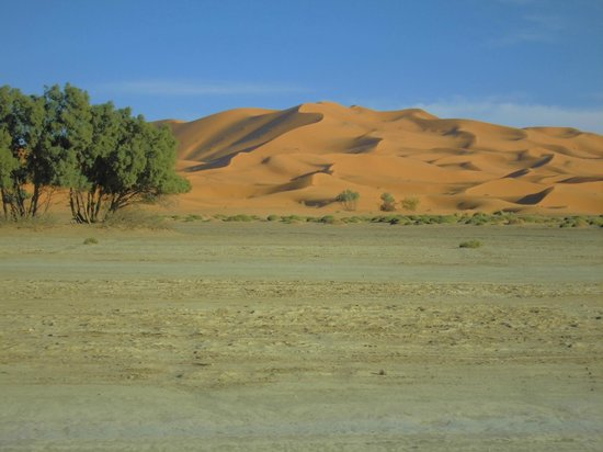 Kasbah Azalay Merzouga: Pic3