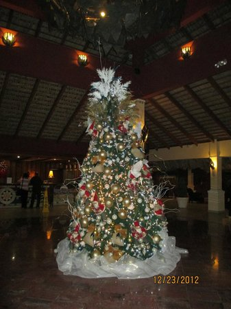 Be Live Collection Marien: tree in the lobby