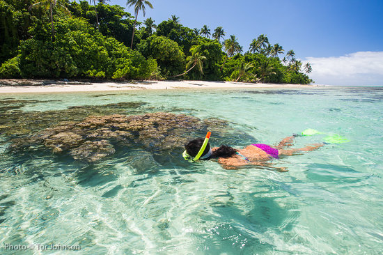 Leleuvia Island Resort: Great snorkeling right off the beach