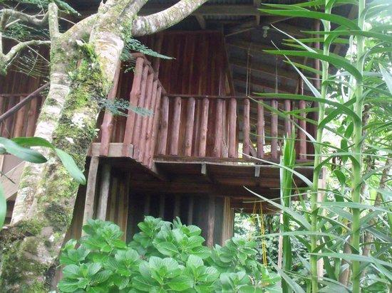 Cataratas Bijagua Lodge: Habitacion