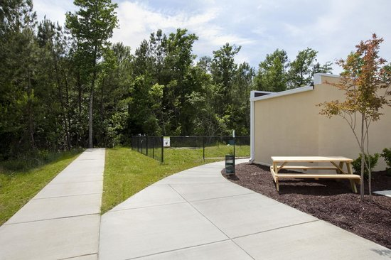 Home2 Suites by Hilton Jacksonville: Walking Trail