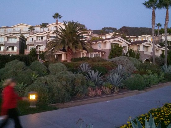 Montage Laguna Beach: Some of the bungalows next to the main bldg