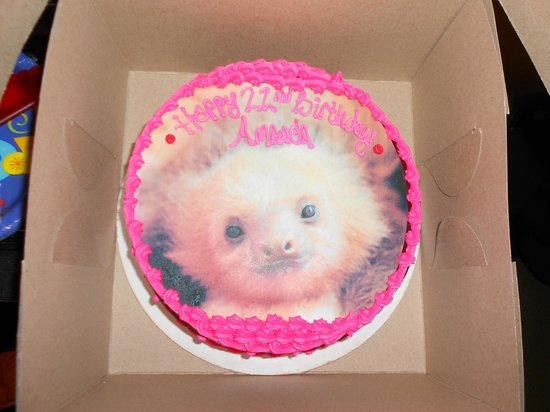 Ultimate Pastry Shop: GLUTEN FREE custom picture cake (baby sloth print)