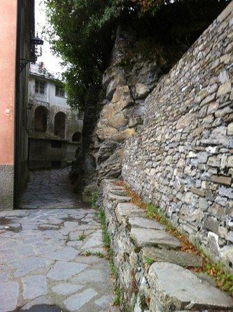 أوتيل مونتاليجرو: Many winding paths around hotel