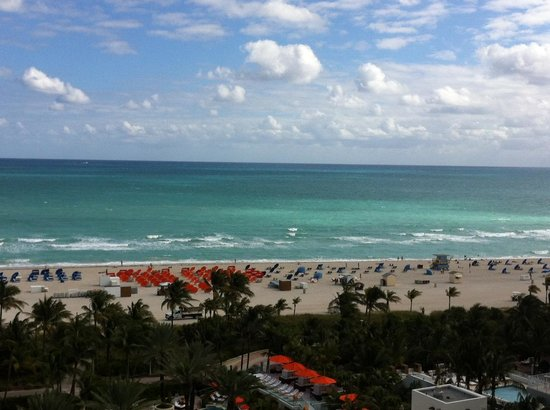 Loews Miami Beach Hotel: View from my room.