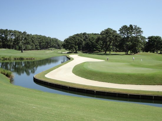 TPC at Sawgrass Stadium Course : Behind the 11th green