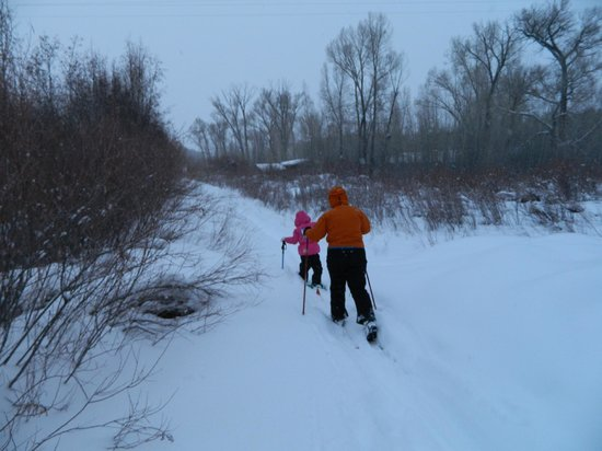Chama River Bend Lodge: You can ski or walk about 1/4 mi northward beside the river