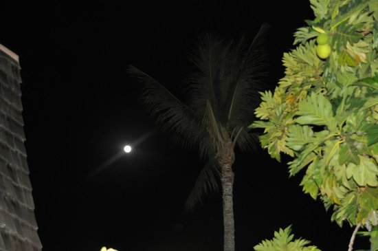 Hotel Molokai: Full moon from our lanai.