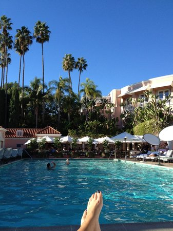 The Beverly Hills Hotel:                                     The pool