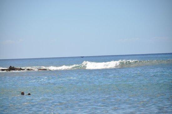 Dixie Maru Beach House The Best Beaches In World