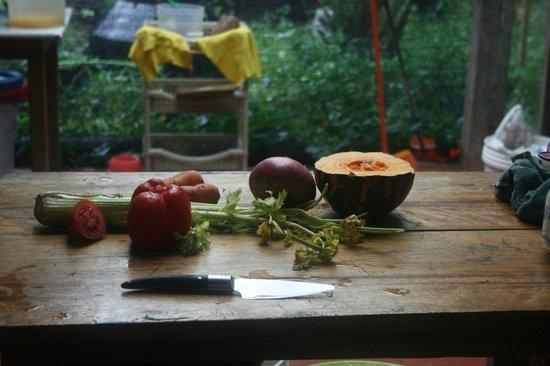 Ecoaldea Kapievi: La cocina está abierta para los visitantes