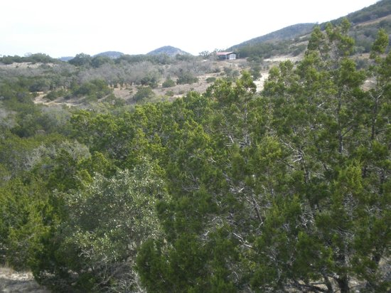Bar M Guest Ranch, LLC: View from trail