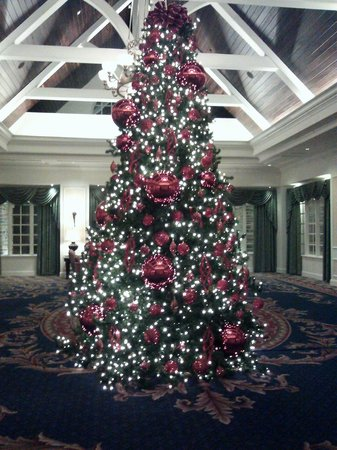 Washington Duke Inn & Golf Club: Holiday Tree