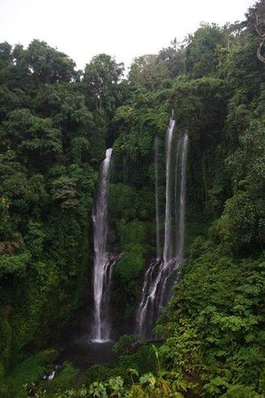 写真Sekumpul Waterfalls枚