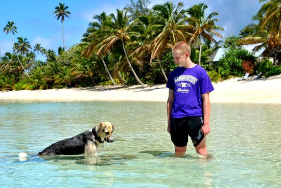 My son in the beach in front of Palm Grove...Jake, the dog hanging in the water with him