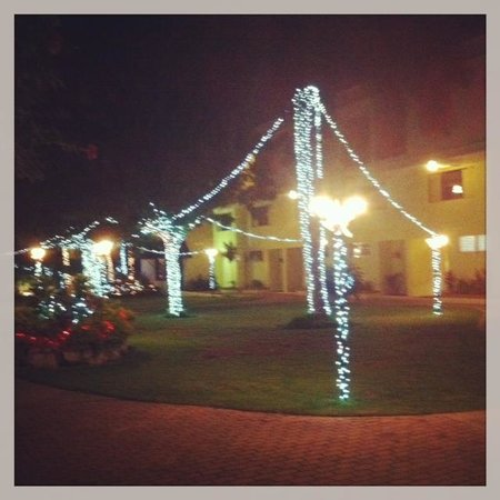 The Knutsford Court Hotel : Christmas Eve 2012 Beautiful JA
