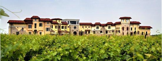 Colaneri Estate Winery Niagara On The Lake All You