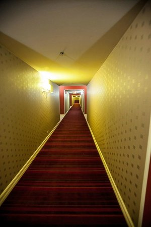 Hotel Blake Chicago: Something about this hallway is very cool!